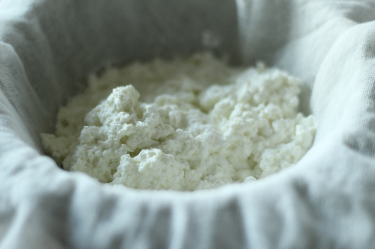 ricotta straining in cheesecloth