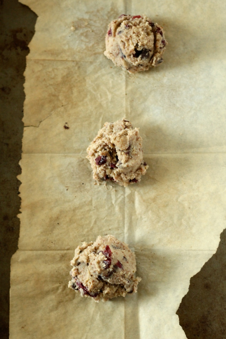 chocolate cranberry cookie dough row {paleo}