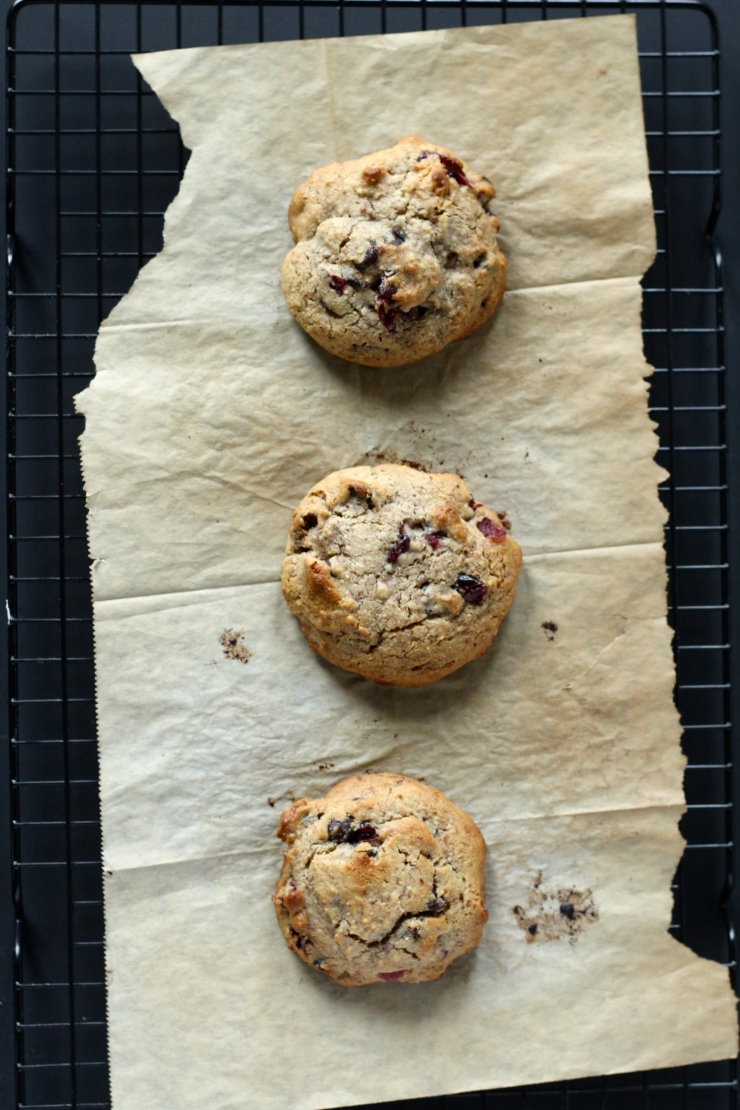 chocolate cranberry cookie row {paleo}